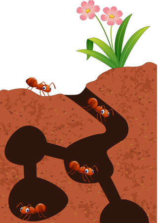 Vector illustration of Cartoon ants colony