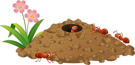 Vector illustratie van Cartoon mierenkolonie en mierenhoop