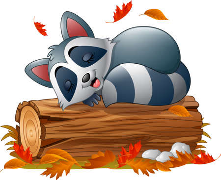 Vector illustration of Cartoon raccoon sleeping in the autumn weather