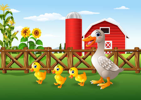 Vector illustration of Cartoon duck family in the farm