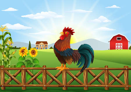 crowing: Vector illustration of Cute cartoon rooster crowing in the farm fence Illustration