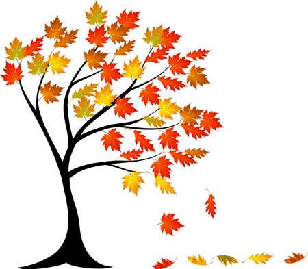 vector illustration of Autumn tree cartoon