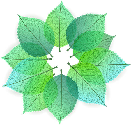 feuille arbre: Vector illustration de fond avec des feuilles d'automne styliser Illustration