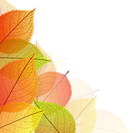 Vector illustration of Background with stylized autumn leaves