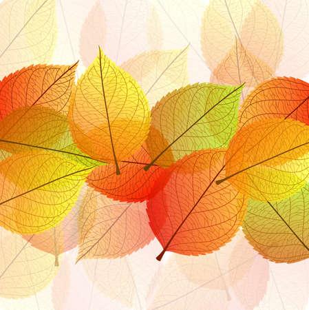 stylize: illustration of Background with stylize autumn leaves