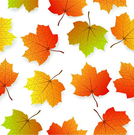 vector illustration of Background with stylized autumn leaves Illustration