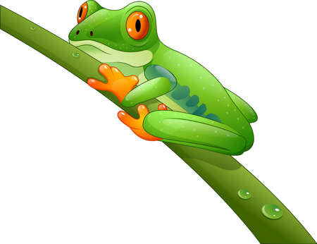 croaking: illustration of Cartoon Red-Eyed Amazon on branch