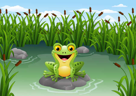 illustration of Cute frog on the rock