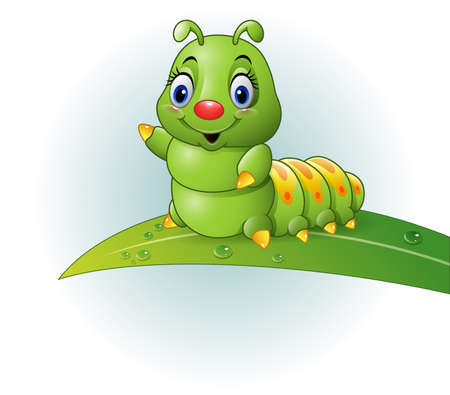 leah: illustration of Cartoon green caterpillar on the leaf