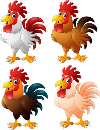 illustration of Cartoon funny rooster collection set Illustration