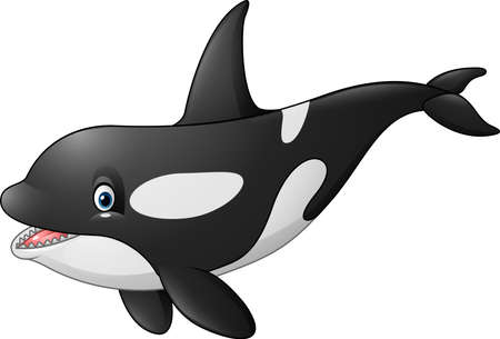 illustration of Cute orca isolated on white background