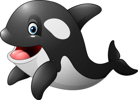 orca: illustration of Cute orca isolated on white background