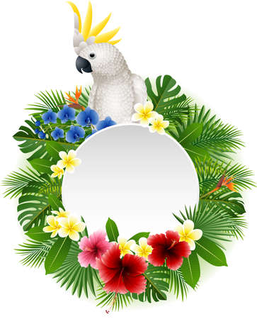 illustration of Cute parrot with blank sign on plant background  イラスト・ベクター素材