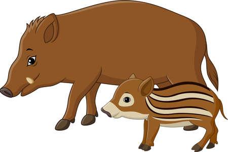 piglet: Vector illustration of Cartoon wild boar and piglet Illustration