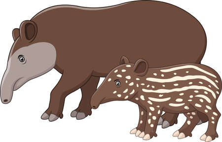 Vector illustration of Mother and baby tapir Vettoriali