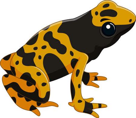 Vector illustration of Poison dart frog isolated on white background Illustration