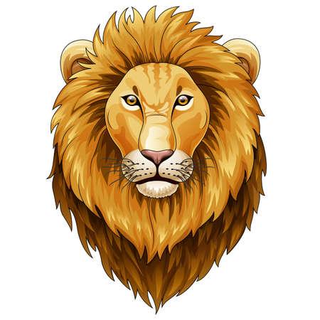 Vector illustration of Lion head mascot