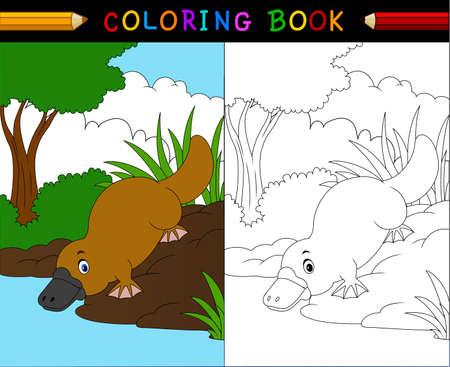 australian animals: illustration of Platypus cartoon coloring book, Australian animals series