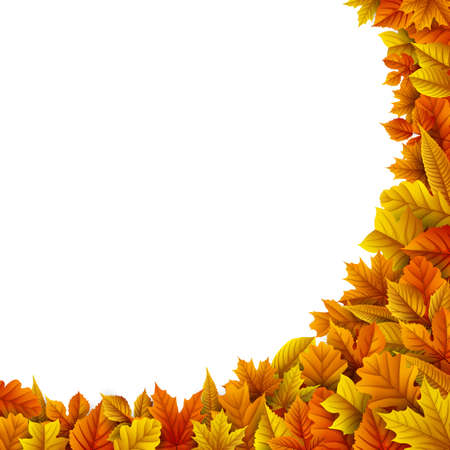 Vector illustration of Autumn leaves isolated on white background