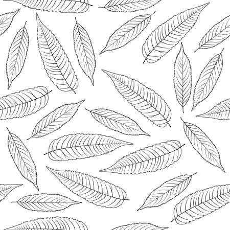 Hand drawn rowan leaves isolated on white background Stock Photo