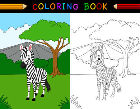 Cartoon zebra coloring book