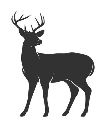 Silhouette of deer with antlers on white background