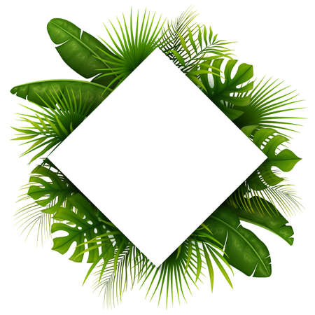 Tropical green leaves with white frame place for text isolated on white background Illustration
