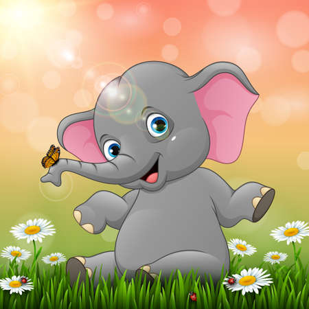 Cute baby elephant sitting on grass background