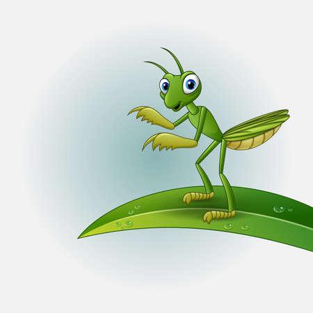 Cartoon praying mantis on leaf