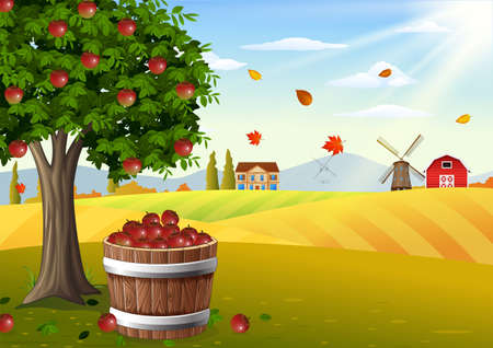 Apple tree and basket of apples in farm landscape at autumn Banque d'images - 104760760