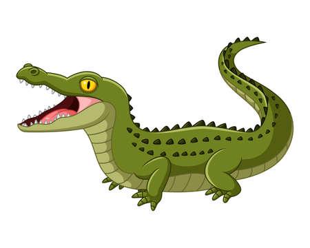 Crocodile open mouth Stock Photo