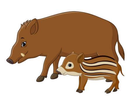 Cartoon wild boar and piglet