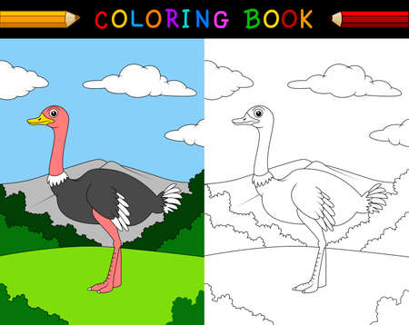 Cartoon ostrich coloring book Stockfoto