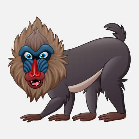 Cartoon mandrill baboon isolated on white background Ilustrace