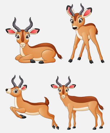 Vector illustration of Cartoon impala collection set