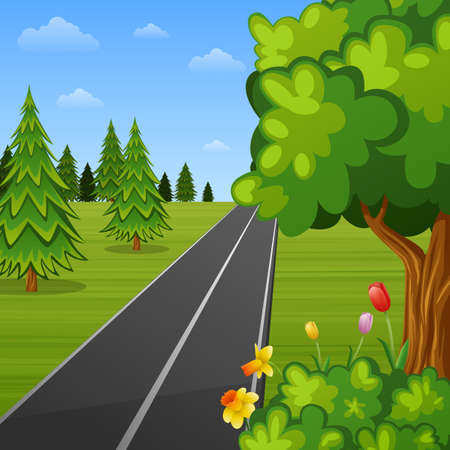 Summer landscape with trees and road Stockfoto