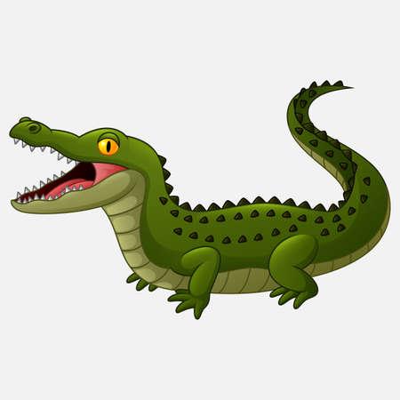 Cartoon crocodile isolated on white background