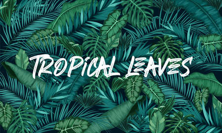 Tropical leaves forest background Illustration