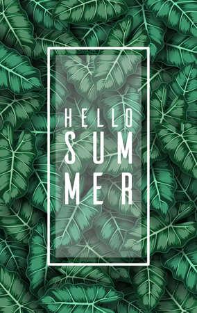 Hello summer with Caladium leaves green