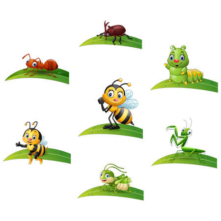 Cartoon insect on leaf collections set