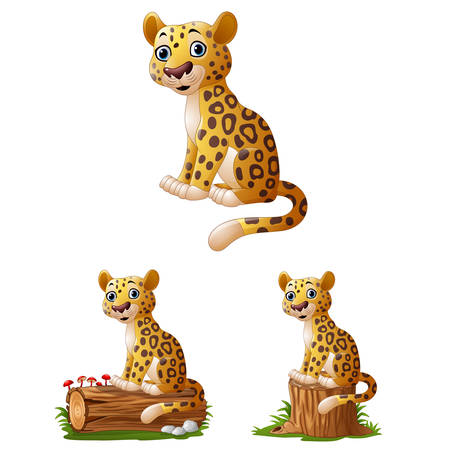 Cartoon leopard sitting collections set