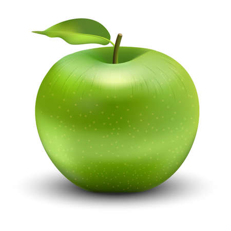 Vector illustration of green apple