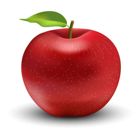 Vector illustration of red apple