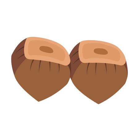 Simple hazelnuts design on white background