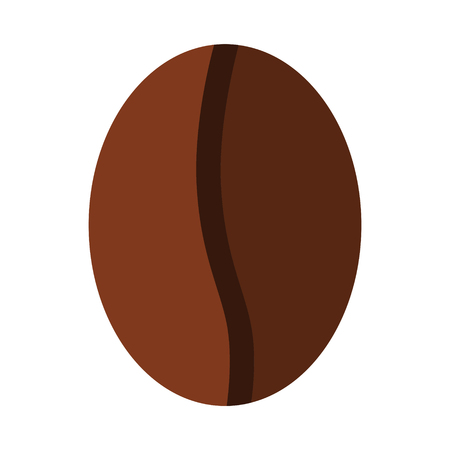 Flat coffee bean isolated on white background