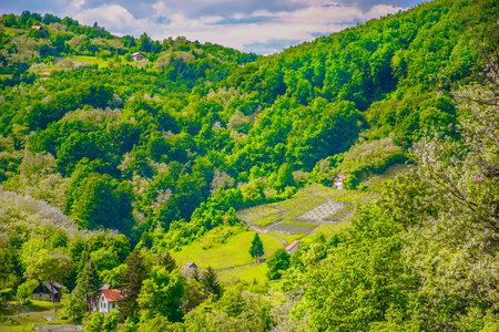 Scenic view at forest valley in Zagorje region, Northern Croatia landscape. 版權商用圖片 - 109519969