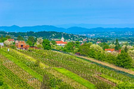 Scenic view at marble vineyards in springtime in Zagorje region, Varazdin County.