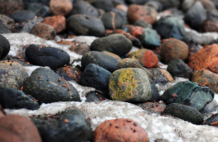 Colorful stones and snow in between them