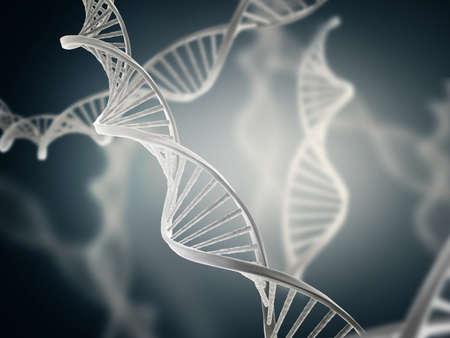 acido: Ilustración de la estructura del ácido desoxirribonucleico (ADN)