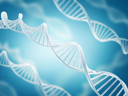 데 옥시 리보 핵산의 구조 (DNA)